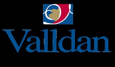 logo-valldan-transparent